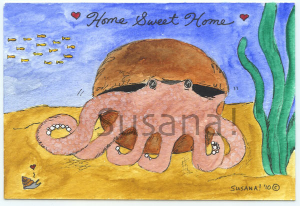 octopus_coconut_home_snail_schooloffish_watermark