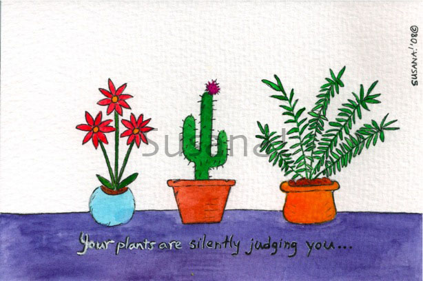 your_plants_are_silently_judging_you_cactus_daisies_fern_watermark